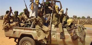 حركة متمردة بدارفور تعترف بوجود قواتها داخل الأراضي الليبية