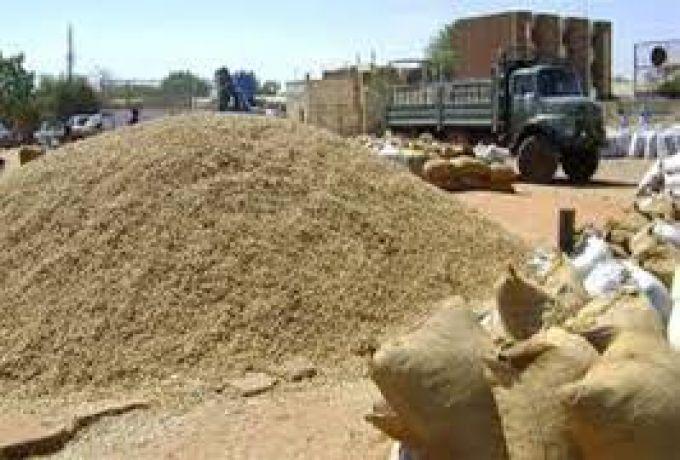 فتح الحدود مع الجنوب ينعش صادرات الإنتاج الزراعي والحيواني