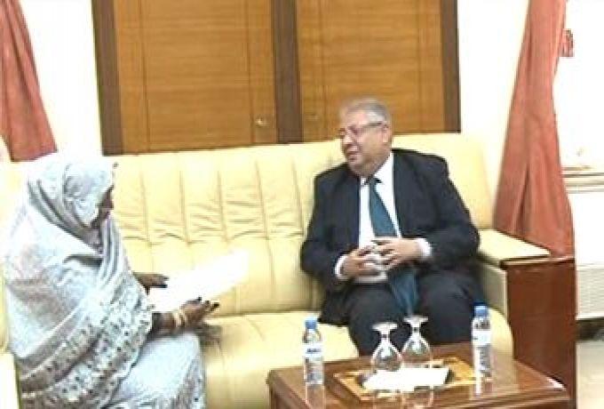 شلتوت: لا توجد أي قوات مصرية داخل السودان