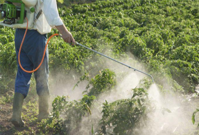 """برلماني: """"40%"""" من المبيدات الزراعية الموجودة بالأسواق حالياً مهربة من دول الجوار"""