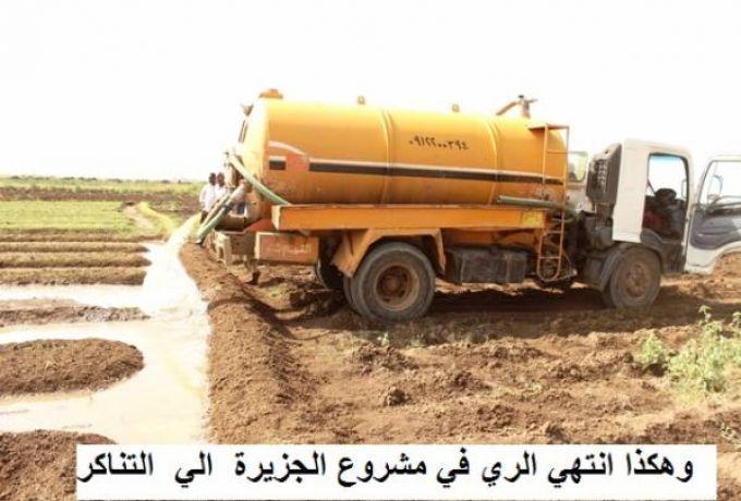 وزير الزراعة : 4 أشخاص يحتكرون استيراد وتجارة القمح