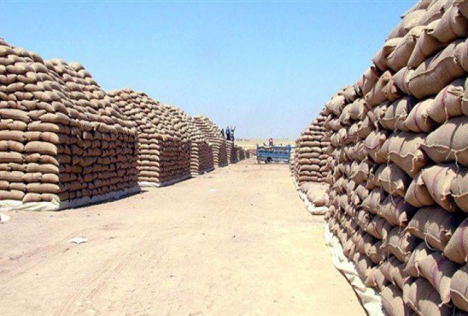 شراء القمح المحلي لصالح المخزون الاستراتيجي فقط
