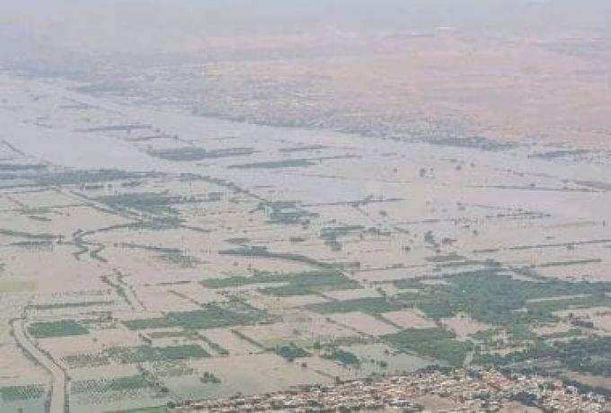 وزارة الخارجية تشكل لجنة لمجابهة آثار الفيضانات والسيول