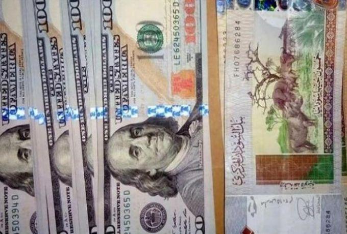 القصة الكاملة لتجار مافيا الدولار